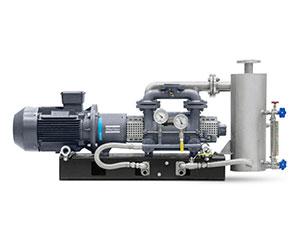 Atlas Copco - Liquid Ring Vacuum Pump